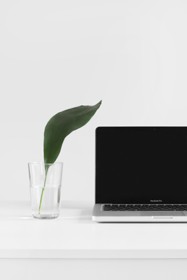 Plant in a glass vase sitting next to a laptop on a desk.