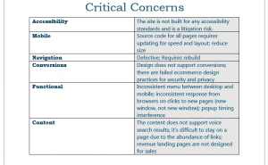 Critical Concerns Section