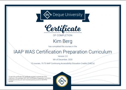 IAAP WAS Certification Preparation